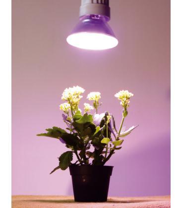 15W-827 E27 Lampe de plante
