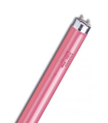 T8 F36W-P G13 Pink