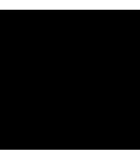Schaubring für Lampenhalter Fassung G13